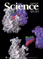 1999 Science Cover